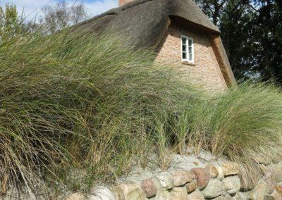 DeFries antike Mauerziegel - Haus unter Reet mit Friesenwall
