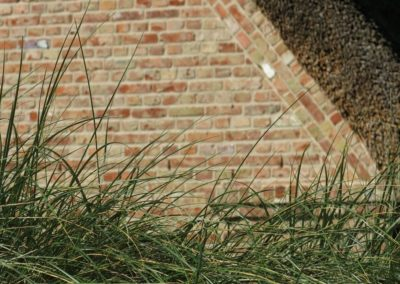 DeFries antike Mauerziegel - Detailansicht Haus unter Reet mit Dünengras